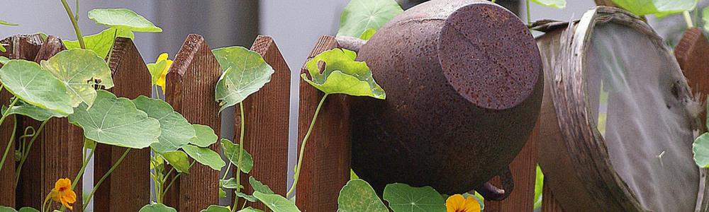 Gartenschränke hinter dem Gartenzaun