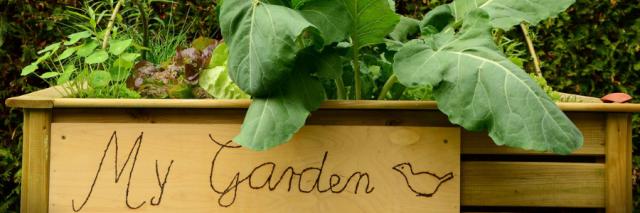 4 Tipps für einen frischen Frühlingslook im Garten