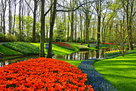 Rasenkanten in Parkanlage