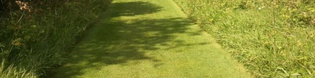 Rasenkanten – Zuverlässige Trennung zwischen Blühpflanzen und Grünflächen