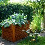 Hochbeete-Trend zum herkömmlichen Gärtnern